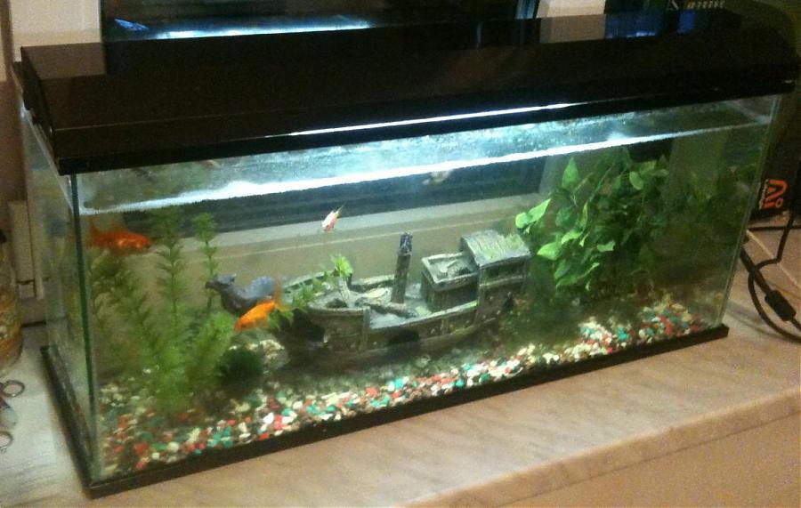 Кораблик в аквариум