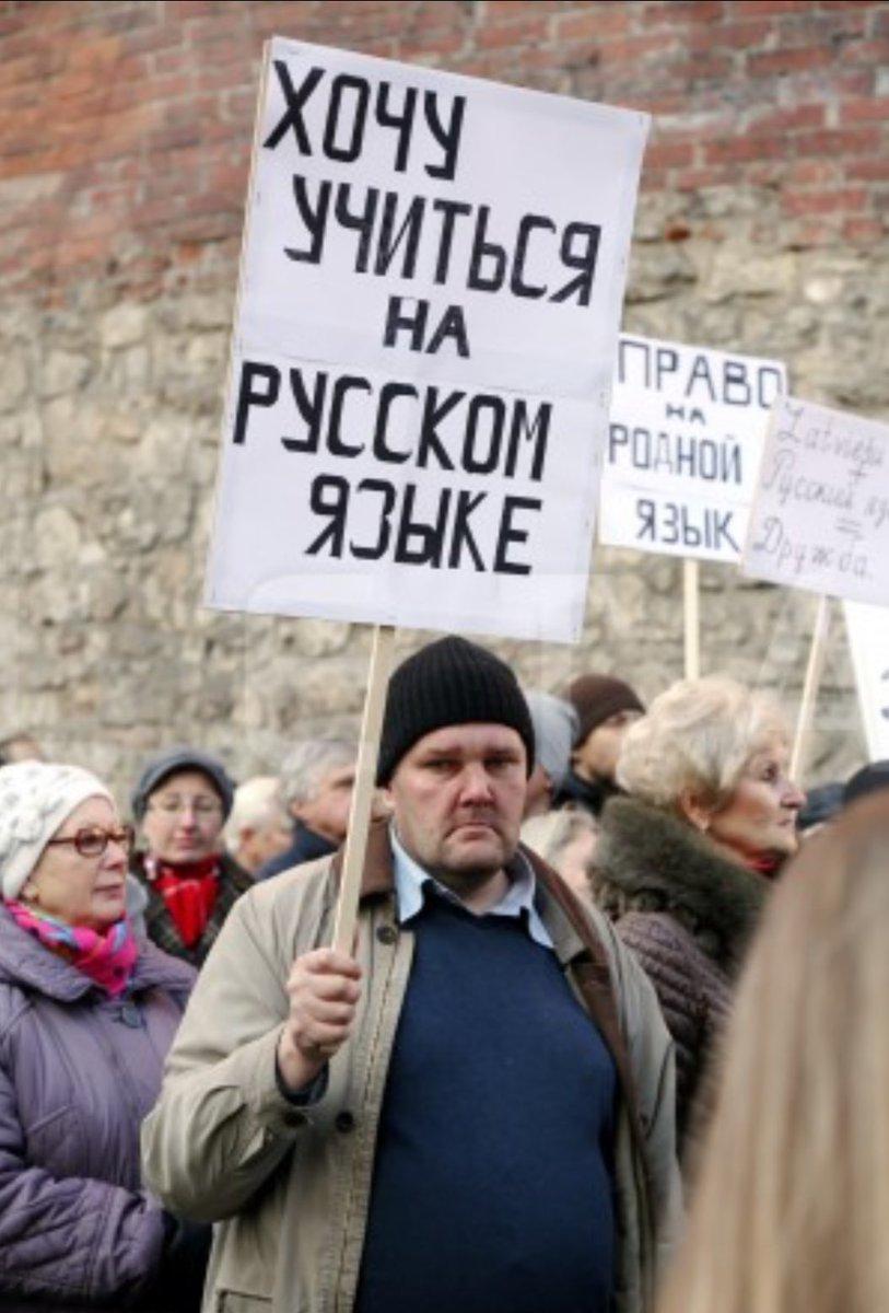 Название:  shkolyaryk.jpg Просмотров: 98  Размер:  118.8 Кбайт